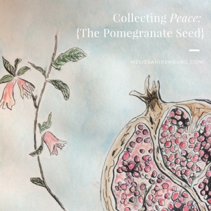pomegranate-seed-2